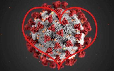 Coronavirus – Solidarität heisst verbunden sein